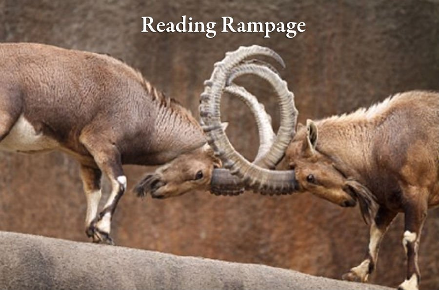 Reading Rampage by James Gholson